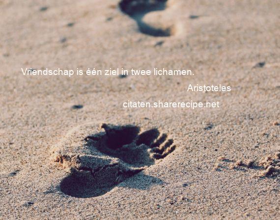 Citaten Over Vriendschap : Citaten over vriendschap aforismen citeert de grote