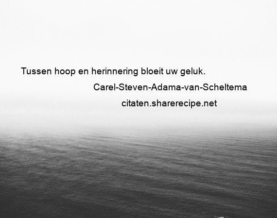 Citaten Van Hoop : Carel steven adama van scheltema tussen hoop en