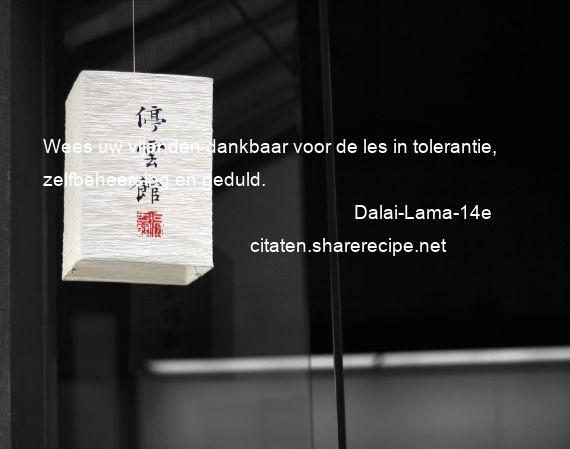 Dalai Lama 14e Citaten Aforismen Citeert De Grote