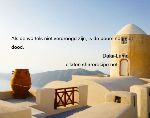Dalai Lama Citaten Aforismen Citeert De Grote Gedachten