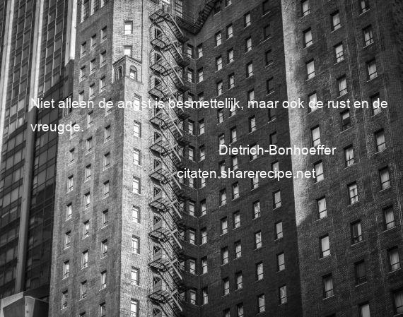 Citaten Angst Jeans : Dietrich bonhoeffer niet alleen de angst is besmettelijk