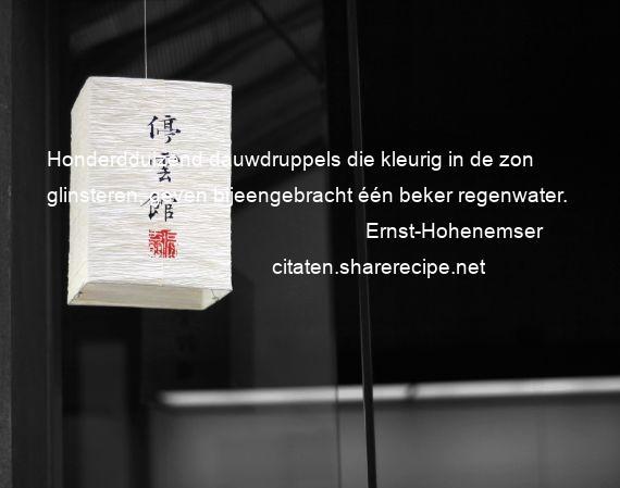 Citaten Over Zelfkennis : Ernst hohenemser citaten aforismen citeert de grote
