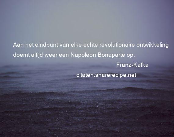 Franz Kafka Aan Het Eindpunt Van Elke Echte Revolutionaire
