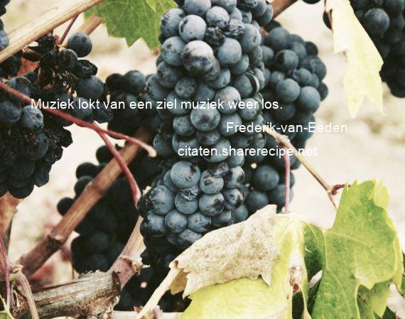 Citaten Muziek : Frederik van eeden muziek lokt een ziel weer los