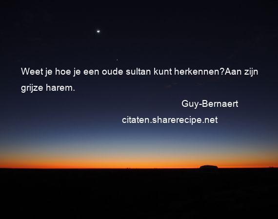 Guy bernaert citaten aforismen citeert de grote gedachten aforismen spreuken - Hoe je je desktop kunt verfraaien ...