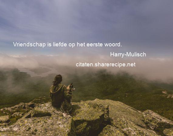 Citaten Voor Vriendschap : Harry mulisch: vriendschap is liefde op het eerste woord.
