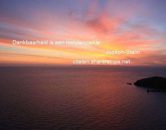 Citaten Uit Joe Speedboot : Citaten over dankbaarheid aforismen citeert de grote
