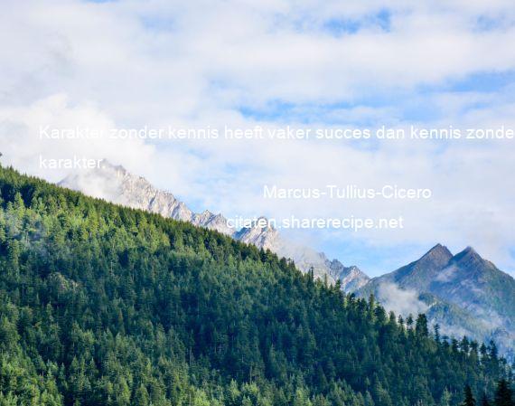 Citaten Cicero : Marcus tullius cicero karakter zonder kennis heeft vaker