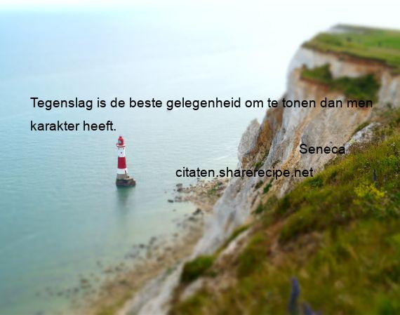 Citaten Seneca Pda : Seneca citaten aforismen citeert de grote gedachten