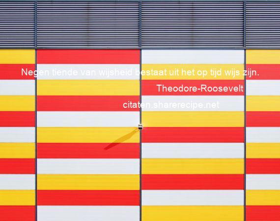 Citaten Tijd Net : Theodore roosevelt negen tiende van wijsheid bestaat uit