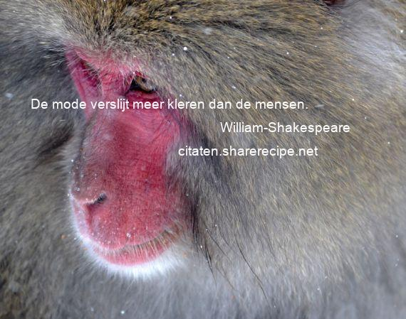 Citaten William Shakespeare : William shakespeare de mode verslijt meer kleren dan