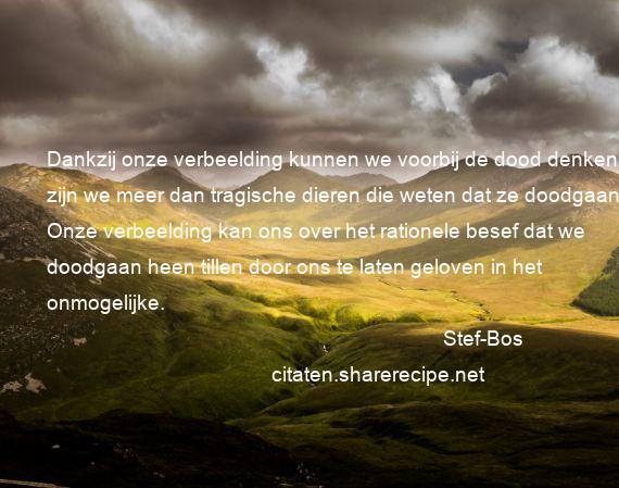 spreuken dood Stef Bos citaten ,aforismen, citeert de grote , gedachten  spreuken dood
