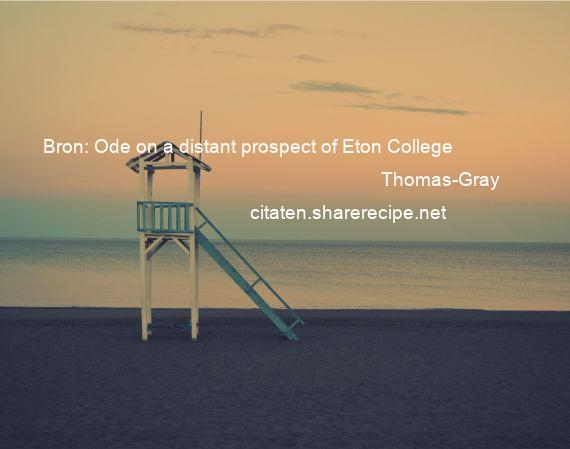 Thomas-Gray - Bron: Ode on a distant prospect of Eton College